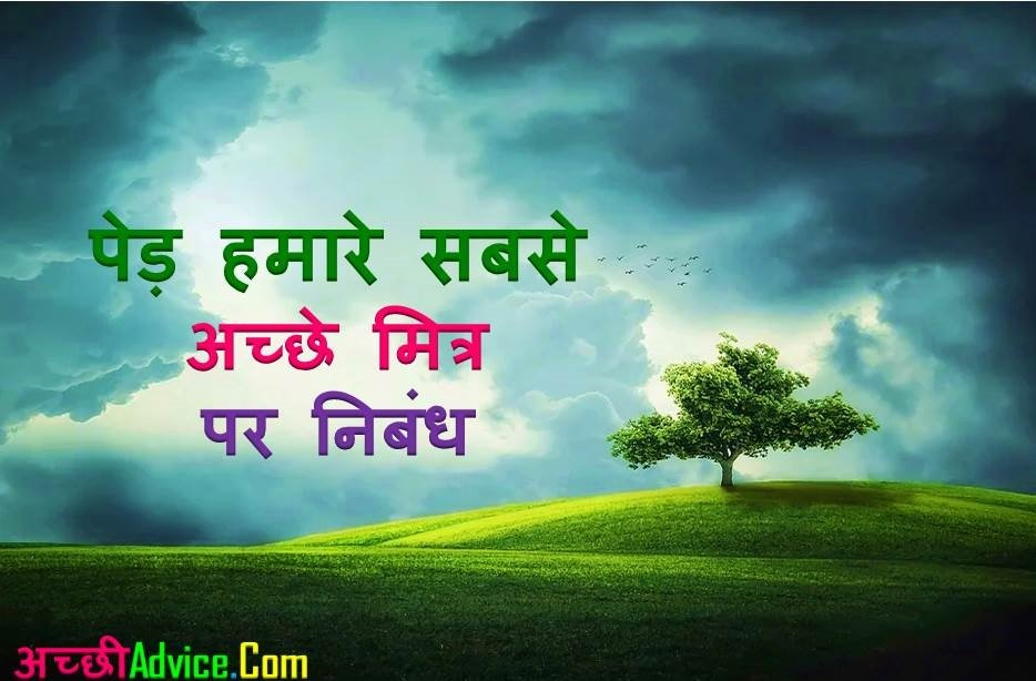 Trees Our Best Friend Essay Nibandh in Hindi